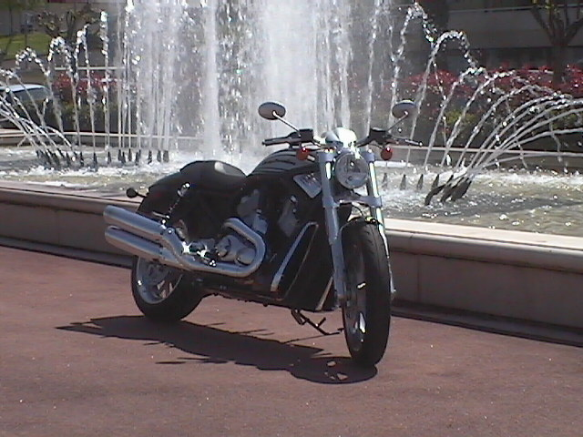 Photo de la Harley-Davidson Street Rod modèle 2005